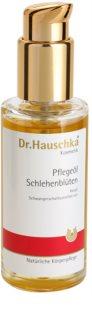 Dr. Hauschka Body Care testolaj kökényből