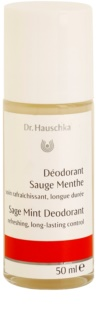 Dr. Hauschka Body Care Salbei Minze Deomilch