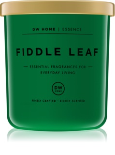DW Home Fiddle Leaf scented candle