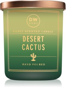 DW Home Desert Cactus scented candle
