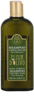 Erbario Toscano Elisir D'Olivo Hiustenpesuaine Oliiviöljyn Kanssa