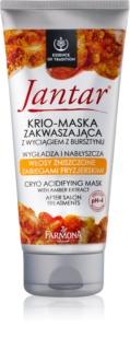 Farmona Jantar masque cheveux