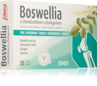 FAVEA Boswellia s chondroitinem a kolagenem doplněk stravy pro podporu zdraví pohybové soustavy a léčbu zánětů
