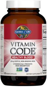 Garden of Life Vitamin Code RAW Healthy Blood komplex minerálů a vitamínů  pro podporu krvetvorby