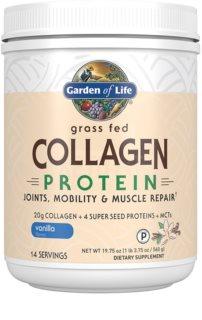 Garden of Life Collagen Protein