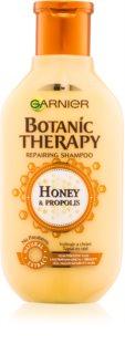 Garnier Botanic Therapy Honey shampoo ricostituente  per capelli rovinati
