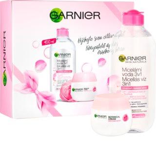 Garnier Skin Naturals set de cosmetice