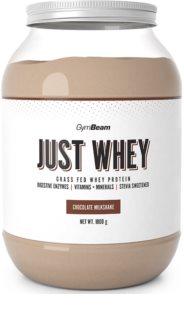 GymBeam Protein Just Whey syrovátkový protein v prášku příchuť chocolate milkshake