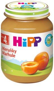 Hipp BIO meruňky