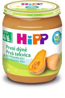 Hipp BIO první dýně