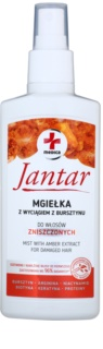 Ideepharm Medica Jantar Leave-in-hårpleje Til skadet hår