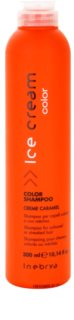 Inebrya Color Shampoo For Coloured Or Streaked Hair