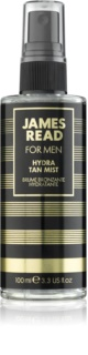 James Read Men brume auto-bronzante visage