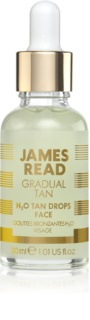 James Read Gradual Tan Self-Tanning Drops for Face