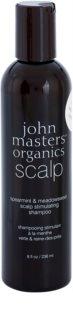 John Masters Organics Scalp champô estimulante para couro cabeludo saudável