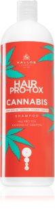 Kallos Hair Pro-Tox Cannabis shampoing régénérant à l'huile de chanvre