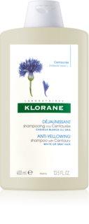 Klorane Centaurée szampon do blond i siwych włosów