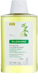 Klorane Cédrat champô para cabelo normal a oleoso
