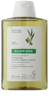 Klorane Olive Extract šampón s esenciálnym výťažkom z olív
