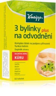 Kneipp 3 BYLINKY NA ODVODNĚNÍ doplněk stravy  na odvodnění organismu