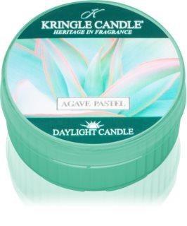 Kringle Candle Agave Pastel bougie chauffe-plat