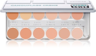 Kryolan Dermacolor Camouflage System palette di 12 correttori