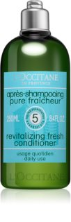 L'Occitane Aromachologie Conditioner for Dry and Brittle Hair