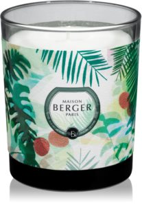 Maison Berger Paris Immersion Lychee Paradise vonná svíčka
