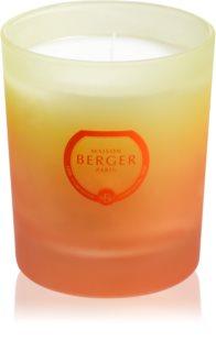 Maison Berger Paris Coco Monoï lumânare parfumată