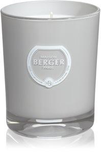 Maison Berger Paris Anti Mosquito Citronella vonná sviečka