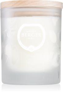 Maison Berger Paris Aroma Focus illatos gyertya  Aromatic Leaves