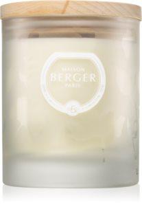 Maison Berger Paris Aroma Wake Up lumânare parfumată  Woody Breeze