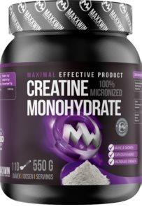 Maxxwin 100% Creatine Monohydrate podpora sportovního výkonu  natural