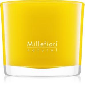 Millefiori Natural Pompelmo vonná sviečka