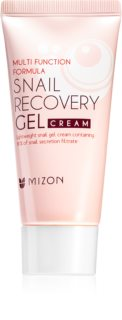 Mizon Multi Function Formula Snail Facial Gel With Snail Extract