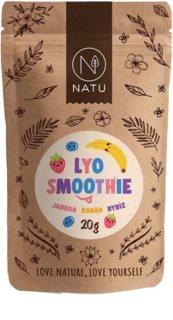 NATU Lyo mix smoothie mrazem sušené ovoce