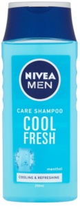 Nivea Men Cool shampoing pour cheveux normaux à gras