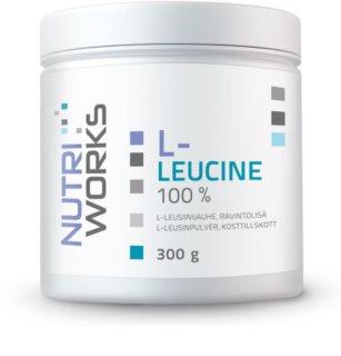 Nutriworks L-Leucine podpora tvorby svalové hmoty