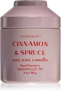 Paddywax Whimsy Cinnamon & Spruce scented candle
