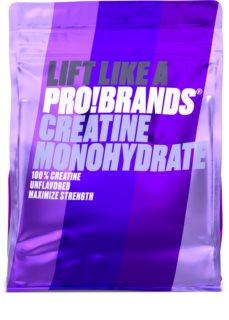 PRO!BRANDS 100% Creatine Monohydrate kreatin monohydrát v prášku
