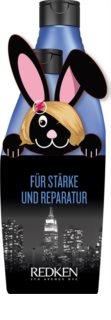 Redken Extreme coffret (para cabelo extremamente danificado )