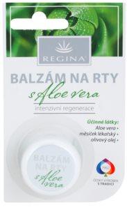 Regina Aloe Vera baume à lèvres hydratant à l'aloe vera