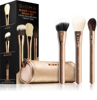 Sigma Beauty Bloom + Glow Brush Set sada štetcov s puzdrom