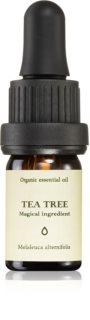 Smells Like Spells Essential Oil Tea Tree aromaa óleos essenciais