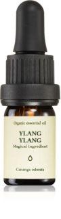 Smells Like Spells Essential Oil Ylang Ylang αρωματικό αιθέριο έλαιο