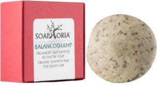 Soaphoria Hair Care șampon organic solid pentru par gras