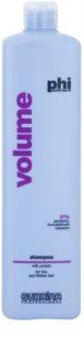 Subrina Professional PHI Volume Volume Shampoo With Milk Protein
