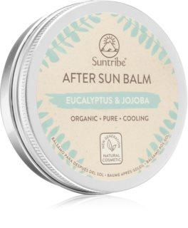 Suntribe After Sun Balm Eucalyptus & Jojoba schützende Sonnenmilch mit kühlender Wirkung