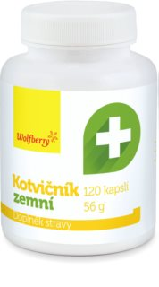 Wolfberry Kotvičník zemní podpora vitality a odolnosti