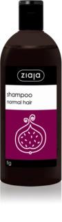 Ziaja Family Shampoo champô para cabelo normal